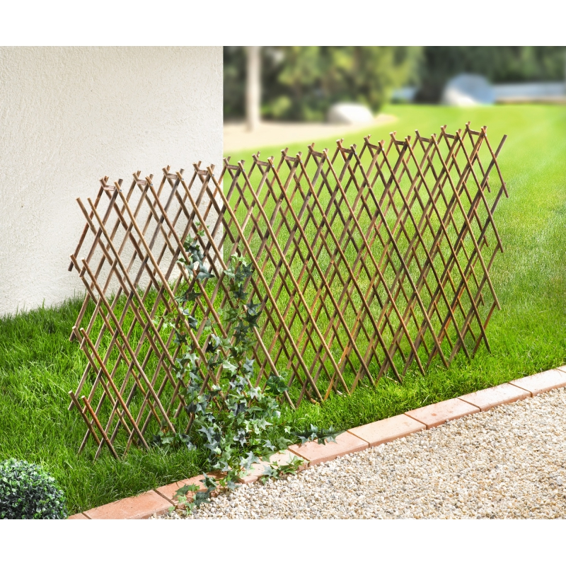 Weiden Zaun Zum Ausziehen