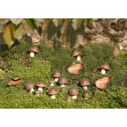 Steinpilze aus Terracotta als Gartendeko, 15er Set